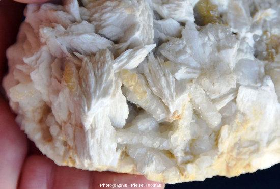 Détail de la partie inférieure gauche de l'échantillon de barytine crêtée précédent
