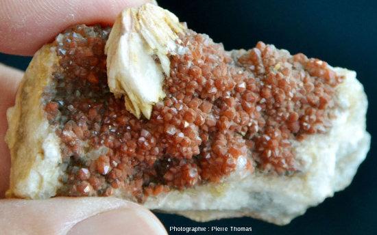 Échantillon montrant du quartz rouge (quartz dit hématoïde, riche en micro-inclusions d'hématite ou de limonite) et de la barytine crêtée