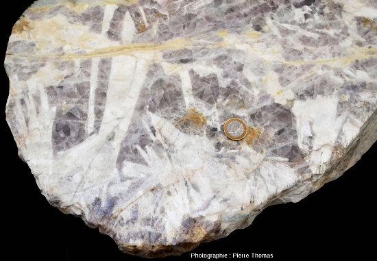 Détail de l'échantillon de fluorine violette englobant de grandes lamelles de barytine (blanche) parfois d'une dizaine de centimètres de long