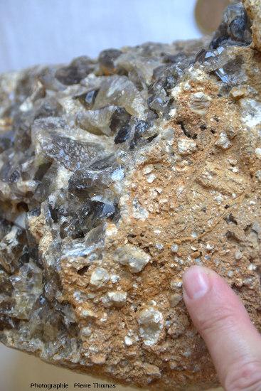 Échantillon associant arkose (grès feldspathique) et barytine, Puy Chateix, Royat, Puy de Dôme