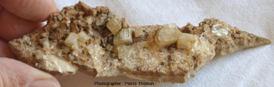 Petits cristaux automorphes de barytine jaune clair regroupés à la surface de mini filons de quartz, gisement de la vallée de Sans-Souci, Chatel Guyon, Puy de Dôme