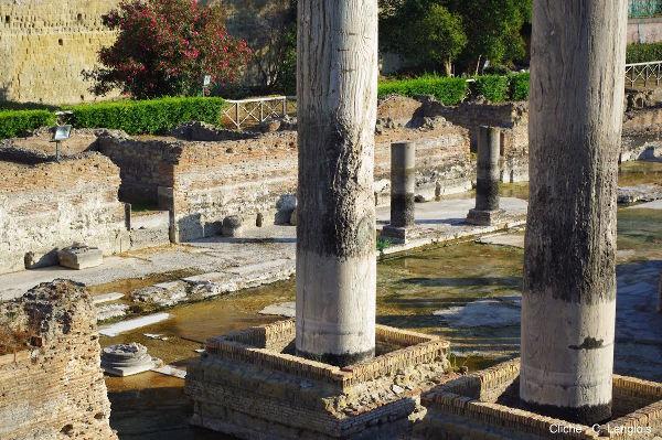 Détail des colonnes du «temple de Sérapis» ou Macellum di Pozzuoli, Italie