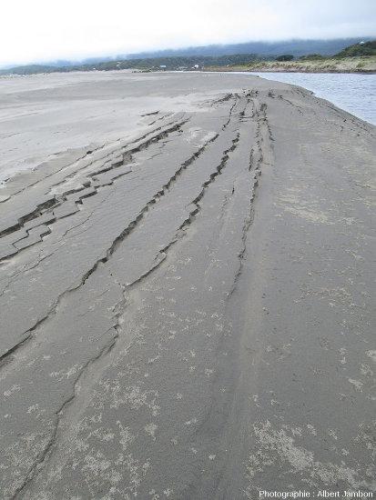 Vue d'ensemble la plage de Cucao (ile de Chiloé, Chili), deux jours après le séisme de magnitude 7,6 du 25 décembre 2016