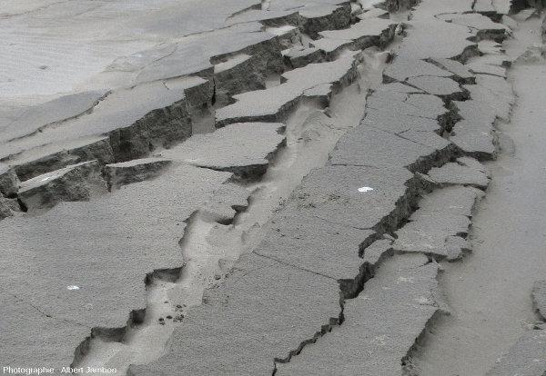 Détail des fissures ouvertes le 25 décembre 2016 par un séisme de magnitude 7,6 sur la plage de Cucao (ile de Chiloé, Chili)
