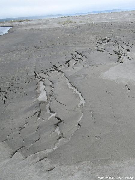 Fractures sur la pente Est du cordon littoral vues en direction de l'amont, plage de Cucao (ile de Chiloé, Chili)