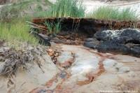 Tourbes et oxydes ferriques: une manière d'étudier les métabolismes bactériens sur les plages landaises