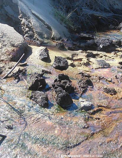 Éboulis très récent recouvrant un niveau d'argile tourbeuses (visible en haut à droite) d'où s'échappent des coulées d'eau ferrugineuse riches en bactéries ferro-oxydantes (couleur rouille), en bactéries et autres unicellulaires chlorophylliens (couleur verte) et en fins films d'oxyde ferrique irisés riches en bactéries