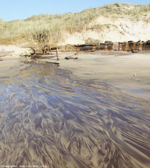 Zoom arrière sur le niveau argilo-tourbeux de la photo précédente et de ses coulées ferrugineuses