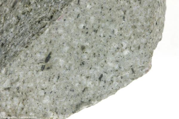 Vue de détail d'un échantillon d'adakite de Coyhaique