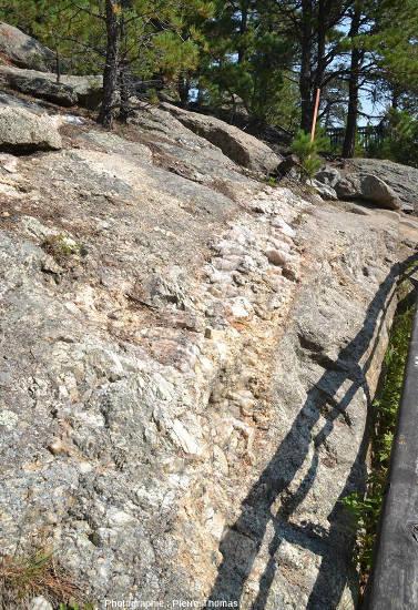 Un filon de pegmatite recoupant le granite sur le bord du Presidential trail, Mont Rushmore (USA)