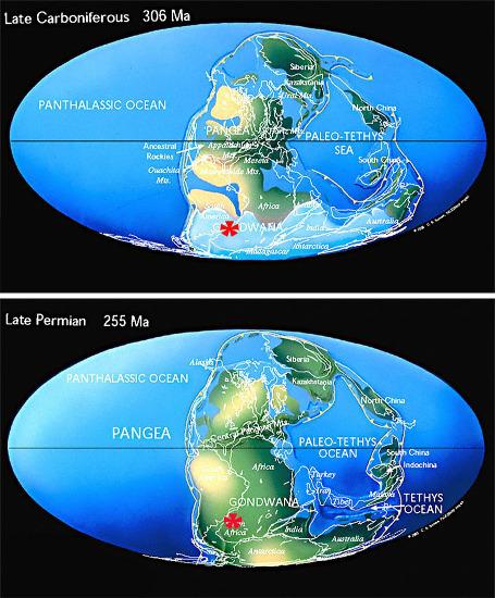 Position paléogéographique de la Namibie (étoile rouge) au Carbonifère supérieur (306Ma) et au Permien supérieur (280Ma)