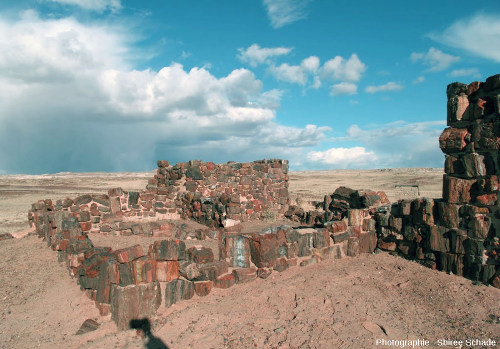Un autre secteur de la « Maison d'agate » (Agate House) dans le Petrified Forest National Park, Arizona (USA)
