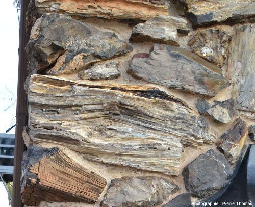 Détail de bois silicifié dans le mur d'une maison de la rue principale de Custer, Dakota du Sud (USA)