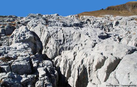 Détail de la surface du Désert de Platé (Haute Savoie)