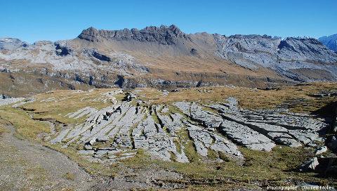 Réseau de diaclases plus ou moins parallèles élargies par la dissolution et donnant un aspect géométrique à ce secteur du lapiaz du Désert de Platé (Haute Savoie)