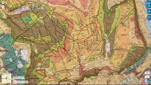 Localisation du secteur du Désert de Platé (ellipse rouge) où ont été prises toutes les photos ci-dessus, sur carte géologique