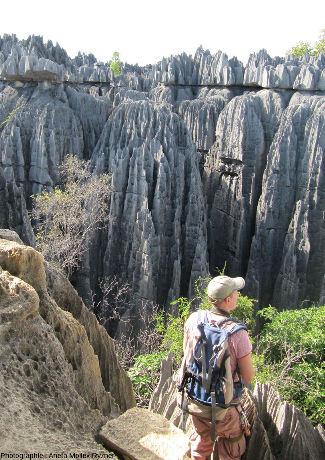 Un paysage caractéristique des Tsingy de Bemaraha (Madagascar)