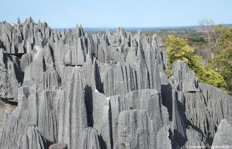 Pinacles et sculptures des Tsingy Bemaraha (Madagascar)