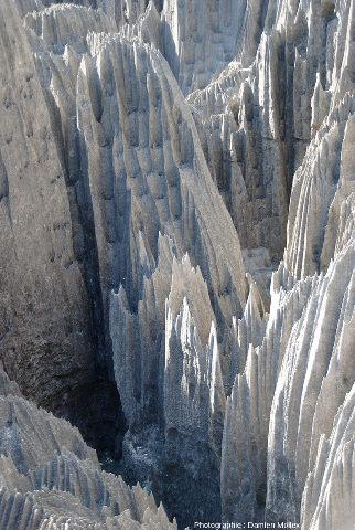 Zoom sur les sculptures karstiques affutées et les canyons des Tsingy de Bemaraha (Madagascar)