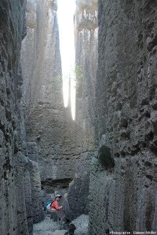 """Au fond d'un """"canyon"""" creusé par la dissolution dans les Tsingy de Bemaraha, Madagascar"""
