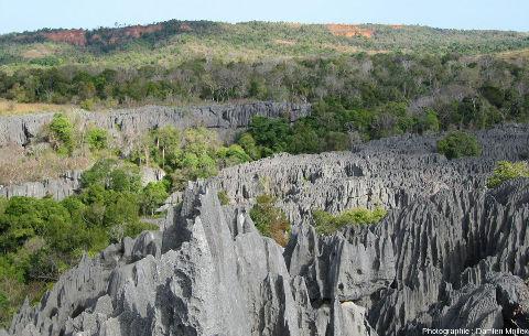 Vue générale des terrains encadrant les Tsingy de Bemaraha, Madagascar