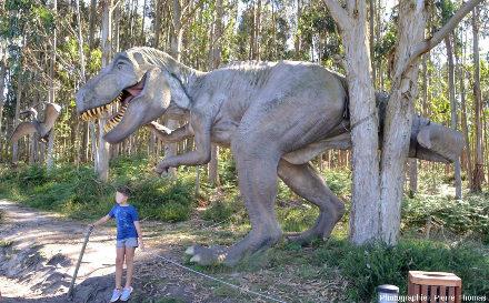 Reconstitution de Tyrannosaurus rex dans un bois d'eucalyptus aux abords du MUJA