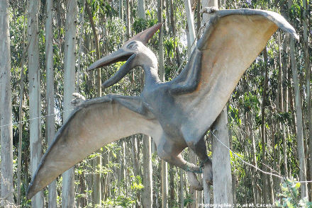 Gros plan sur la reconstitution de ptérosaure de la figure précédente, aux abords du MUJA