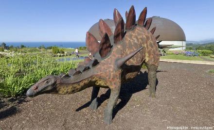Reconstitution d'un stégosaure, autre dinosaure du Jurassique supérieur, aux abords MUJA