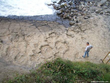 Ensemble de traces de pas de gros sauropodes du Jurassique sur la côte à 1600m du MUJA, depuis le sentier qui longe la falaise côtière