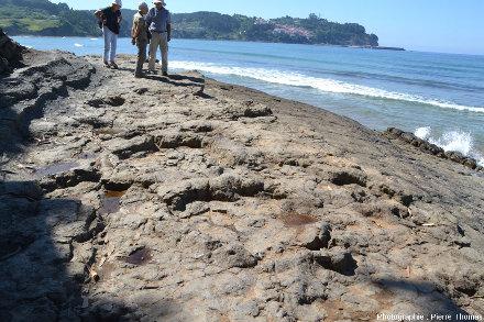 Ces mêmes empreintes de sauropodes du Jurassique proches du MUJA, depuis le platier