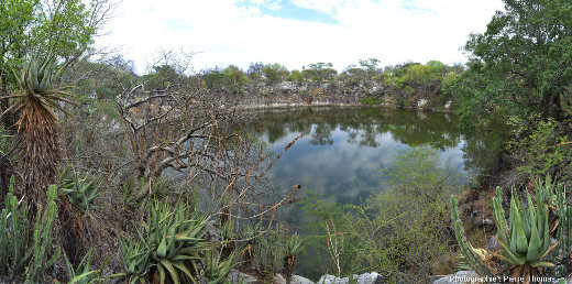 Le lac Otjikoto (Namibie) entouré d'une belle végétation tropicale