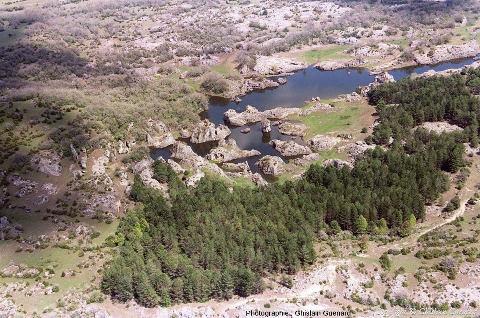 Moitié Nord du lac temporaire des Rives (Hérault), 1er janvier 2008