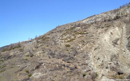 Différence entre le secteur Est (à droite) du glissement du Pas de l'Ours parcouru par des éboulements… et le secteur Ouest (à gauche) qui glisse vers le bas sans que son sol soit complètement déstructuré