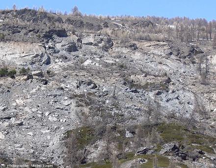 Zoom sur la zone d'arrachement amont d'où part le glissement de terrain du Pas de l'Ours