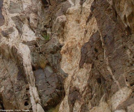 Gros plans sur des filons de pegmatite de la figure précédente, vallée de l'Indus