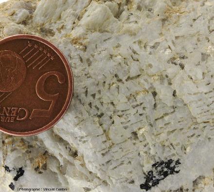 Échantillon de pegmatite graphique ramassé sur une plage de Roscoff, détail