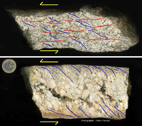 Juxtaposition de photos interprétées de l'échantillon de pegmatite syncinématique de la figure précédente et d'un échantillon de son encaissant, un granite légèrement schistosé