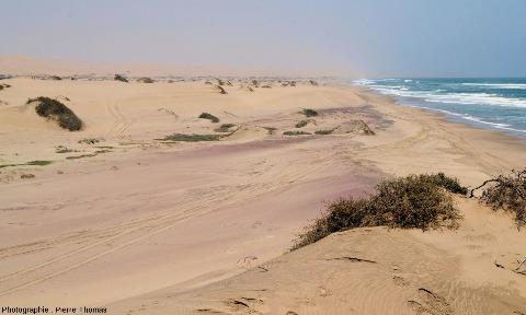Arrière-plage très riche en sable de grenat, côte de Namibie, à une trentaine de kilomètres au Sud de Walvis Bay