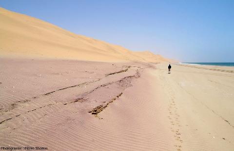 Vue d'ensemble sur une bande de sable particulièrement riche en grenats, côte de Namibie