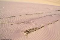 Les plages et les dunes riches en grenats de la côte namibienne