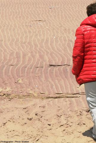 Zone à ripple marks actifs, avec les flancs face au vent, en pente douce, beaucoup plus riches en grenats que les flancs sous le vent, en pente raide