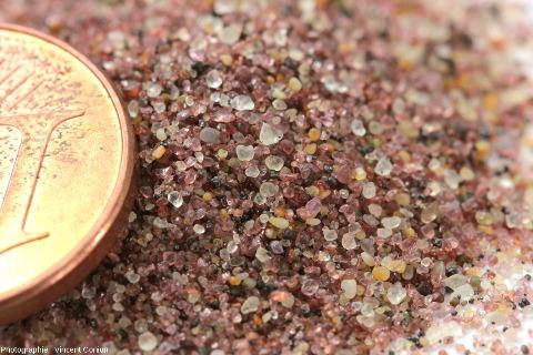 Zoom fait à la loupe binoculaire (à l'ENS de Lyon) sur du sable ramené de cette bande côtière namibienne