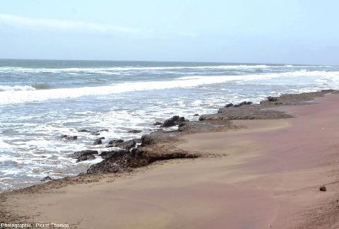 La piste qui va de Walvis Bay à Sandwich Harbour, le long de laquelle ont été prises toutes les photos est parfois coincée entre la mer et le champ de dune, et est submergée à chaque marée haute