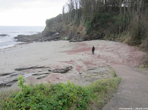 Une plage à grenats sur l'ile de Groix, Morbihan
