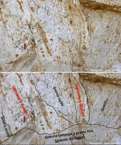 """Détail et interprétation de la partie haute du """"filon"""" inférieur de granite isotrope à grains fins qui recoupe gneiss classique, gneiss œillé et leptynite à grenats"""