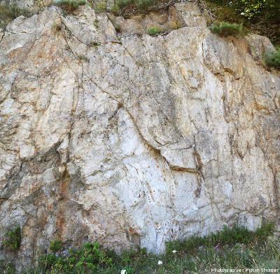 Vue d'ensemble sur l'affleurement de granite du Velay, quelque part sur la commune de Péreyres (Ardèche)