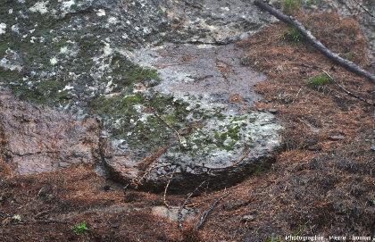 Vue de détail d'un secteur du Sentier Découverte où l'on voit une meule non terminée, non détachée de la paroi et restée en place sur son lieu d'extraction