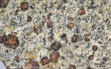 Gros plan sur un échantillon ramassé sur le sentier du Parcours Découverte et ayant subi intensément hydrothermalisme + rètrométamorphisme tardifs