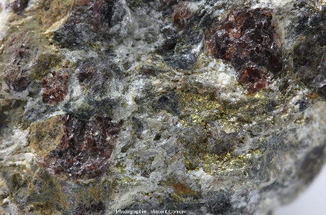 Zoom sur un secteur de l'échantillon précédent montrant le mélange talc + chlorite (en blanc), grenat (en rouge), chloritoïde (en noir) et sulfures (en doré)