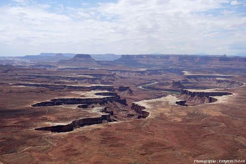 Vue globale sur des reculées entaillant la rive gauche de la Green River (affluent du Colorado), Green River Overlook, Parc national de Canyonlands, Utah (USA)